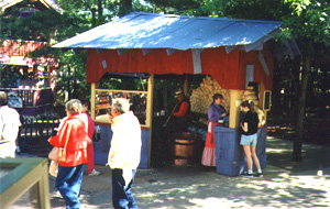 permanent location setup silver dollar city